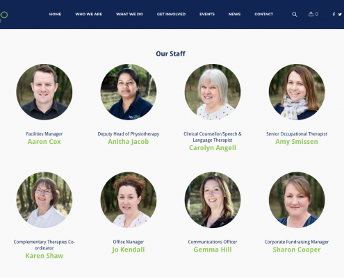 ms centre website design
